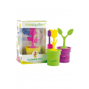 Display Flower Pot - 12 pcs - Citronella